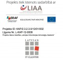 Project IT KVAP – Information Technology Cluster Embassies, Academy, Platforms